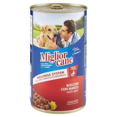 Miglior Cane Bocconcini con...